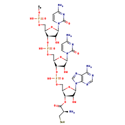 Picture of L-Selenocysteinyl-tRNASec (click for magnification)