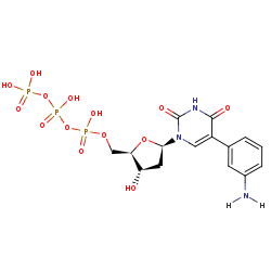 Picture of d[5-(3-aminophenyl)]UTP (click for magnification)