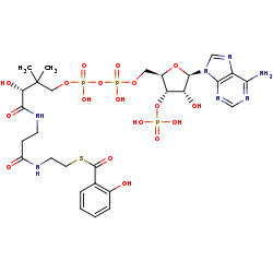 Picture of 2-hydroxybenzoyl-CoA (click for magnification)