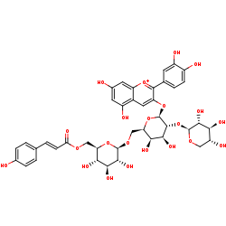 Picture of cyanidin 3-O-[6-O-(6-O-4-hydroxycinnamoyl-beta-D-glucosyl)-2-O-beta-D-xylosyl-beta-D-galactoside] (click for magnification)