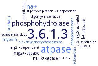 BRENDA - Information on EC 3 6 1 3 - adenosinetriphosphatase